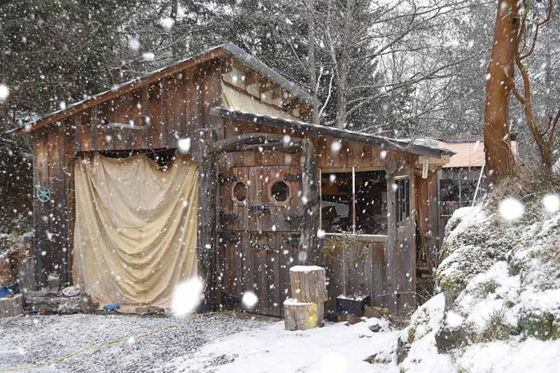 Wood Carving Shed in the Snow
