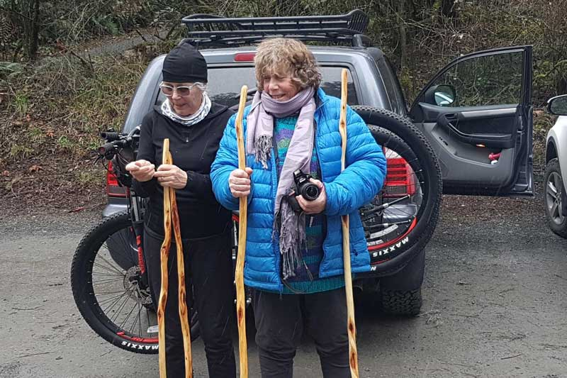 diamond willow walking sticks out for a walk