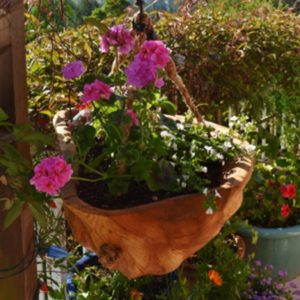 Flower Baskets by Phoebewood