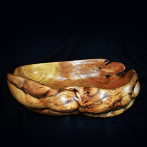 Old Yellow Cedar Burl Half Bowl
